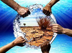 Nước đóng vai trò quan trọng với sức khỏe