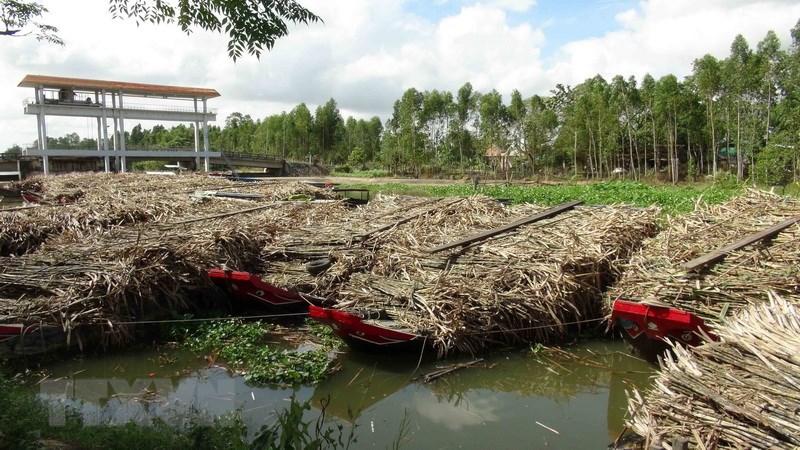 Ô nhiễm nước Trà Vinh