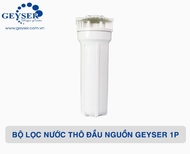 Chân dung bộ lọc nước thô đầu nguồn Geyser 1P